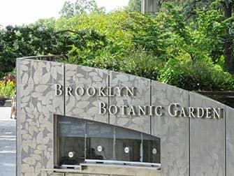 Brooklyn i NYC - Brooklyn Botanic Garden