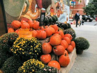 Halloween i NYC - Pumpor