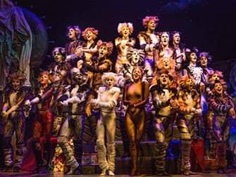 Biljetter till Cats på Broadway - Ensemble