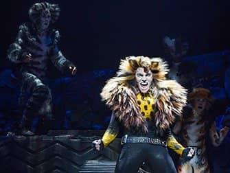 Biljetter till Cats på Broadway - Solo