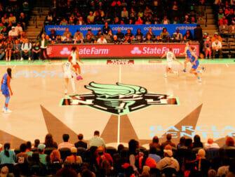 Biljetter till New York Liberty basket - Spelare