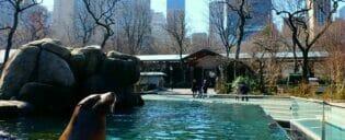 Biljetter till Central Park Zoo