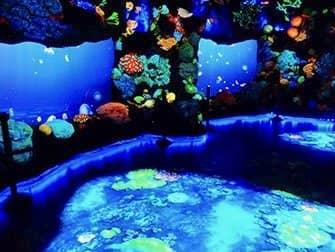 National Geographic Encounter Ocean Odyssey - Deep Sea