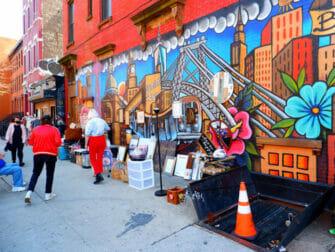 Brooklyn in New York - Gata