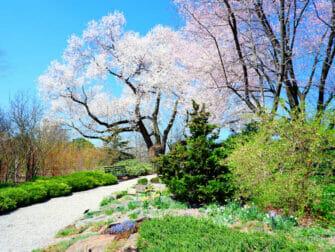Botaniska trädgårdar i New York - New York Botanical Garden i Bronx