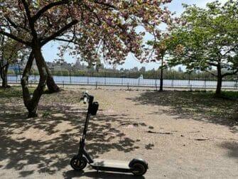Hyra elsparkcykel i New York - Elsparkcyklar